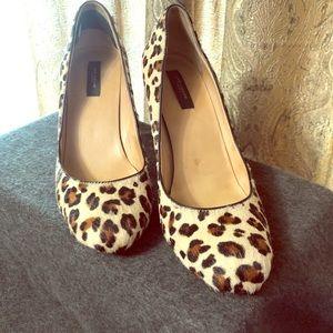 Ann Taylor Size 9 Calf-hair, Leopard Print Pumps